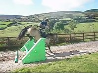 Hilarious Painful Fall Off Horse