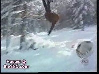 Snow sports accidents 2